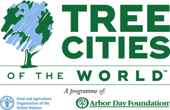 Carmel recognized as 'Tree City of the World'